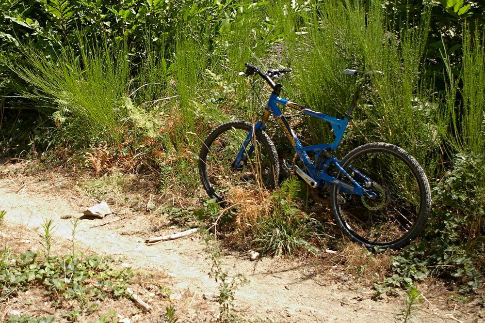 Bucafaggi Trail